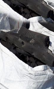 Casuarina charcoal