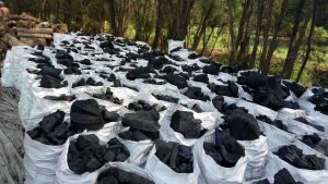 All Factory Charcoal in Egypt